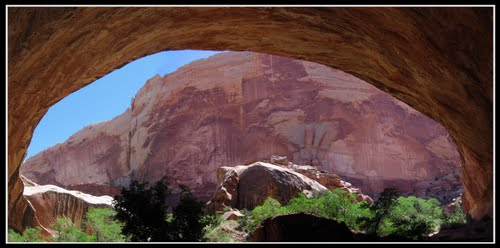Muley Twist Overhang Near Burr Trail