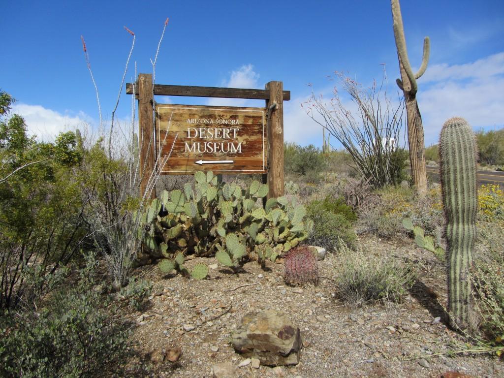 Arizona Bike Tour, Sonoran Desert Museum