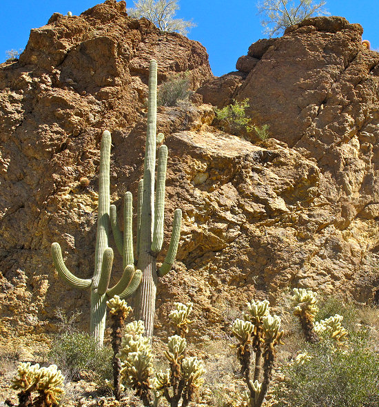 Arizona Bike Tour, Hiking in Aravaipa Canyon