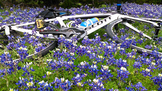 Bikes and bluebonnets along the Willow City Loop