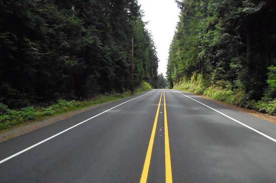 Beautiful roads await in the San Juan Islands