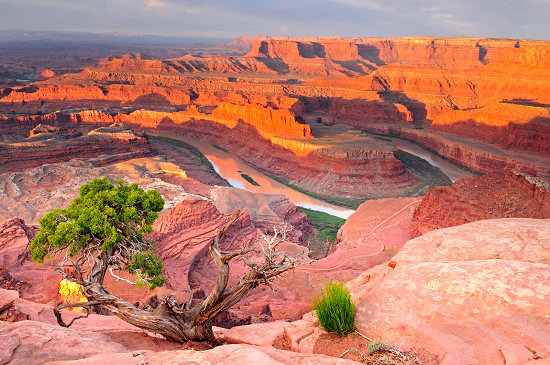 View of the gooseneck in the Colorado River from Dead Horse Point