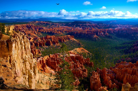 Morning view of Bryce Canyon