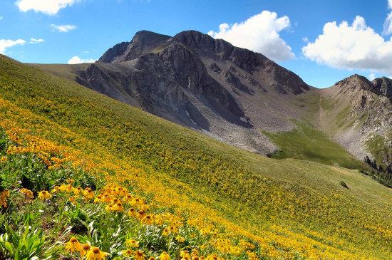 The Elk Mountains of COlorado