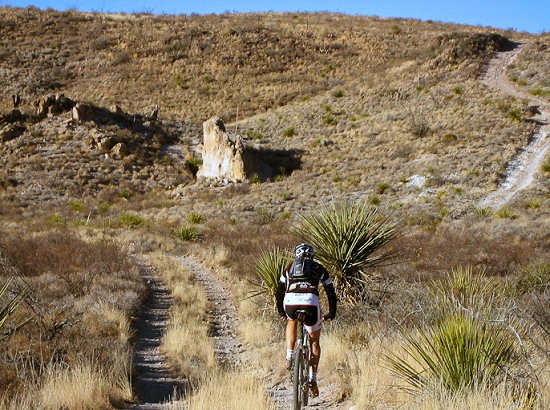 Riding the dual track within Big Bend Ranch State Park