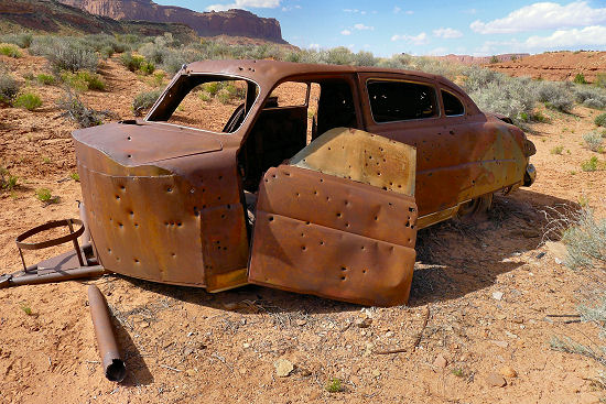 You never know what you'll come across in the desert! Hayduke Trail
