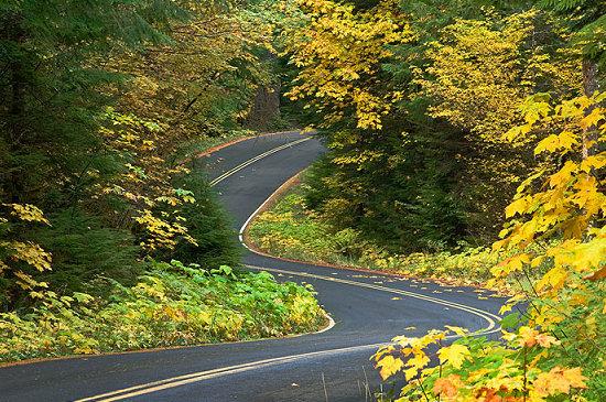 Aufderheide Scenic Highway