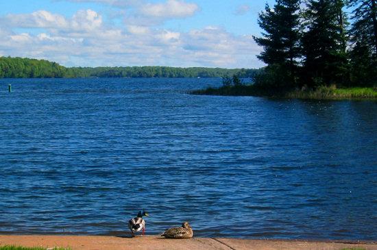 View of Namekagon Lake