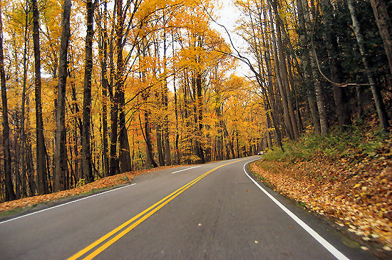 Autumn in Great Smoky Mountains National Park
