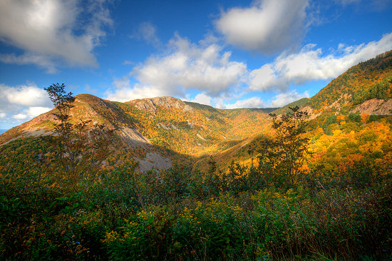 Autumn in the Cape Breton Highlands