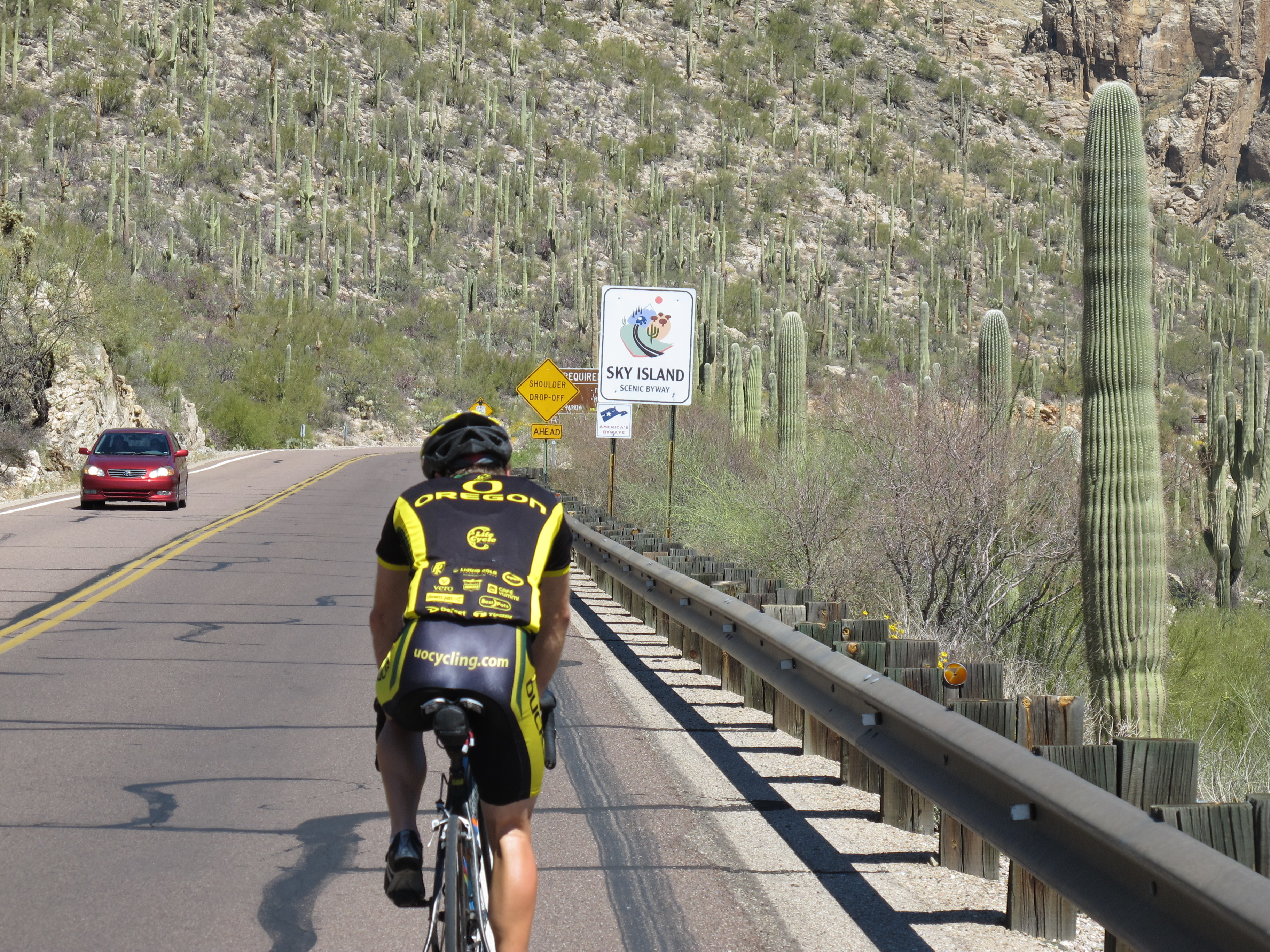 Mt. Lemmon Ascent along he Sky Island Scenic Byway
