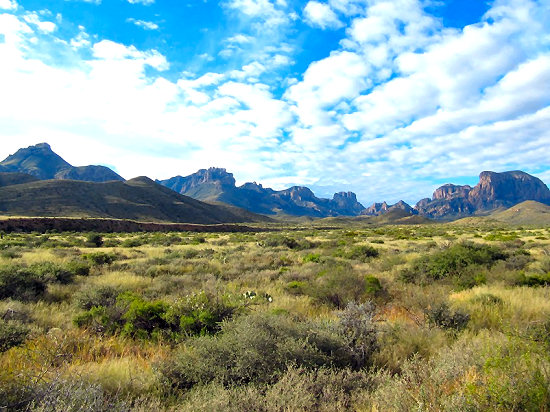 The Northern Chihuahuan Desert of Big Bend