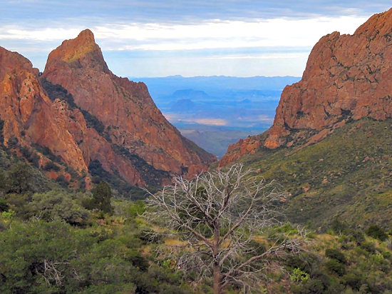 The Window in Chisos Basin
