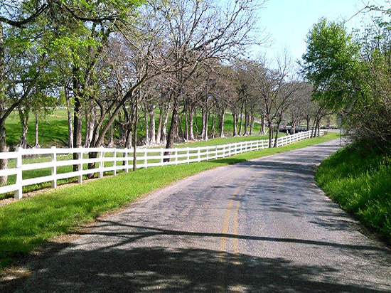 Spring time in Hill Country