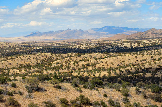 Mustang Mountains near Elgin, AZ
